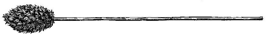 cañón Lanada