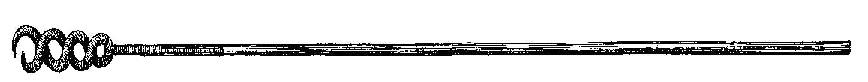cañón Sacatrapos